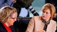 Landwirtschaftsministerin Julia Klöckner muss sich Kritik von Umweltministerin Svenja Schulze anhören.