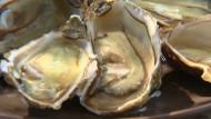 Austern aus dem Automaten