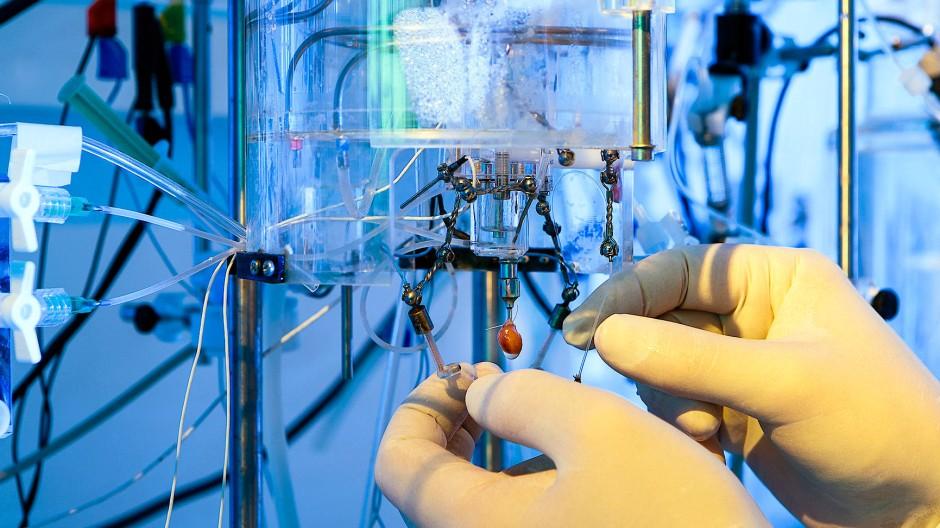 Medizin mit viel Hightech: Ein Wissenschaftler bereitet einen Versuch an einem lebenden Tierherzen vor.