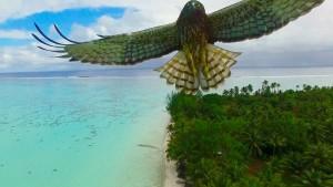 Von Drohnen herab