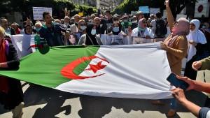 Bekannter algerischer Aktivist in Polizeigewahrsam