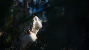 Ausflüge in die Gärten der Erinnerung