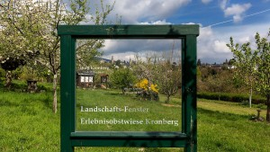 Stahlrahmen für Landschaft und Baum