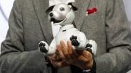 Hey, Wauzi: Der neue Roboterhund Aibo von Sony will nicht nur spielen.