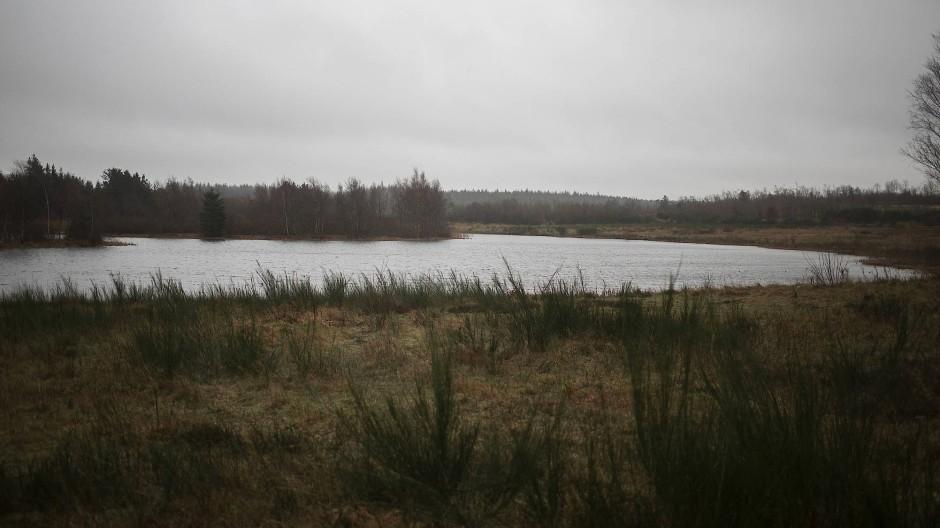 Im Internet wird der kleine Boutrup-See in Westjütland als ungestört, gemütlich und idyllisch gepriesen. Mit etwas Glück könnten Spaziergänger hier einen Hirsch oder Biber sehen.