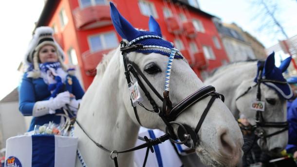 Tierschützer und Promis fordern Pferdeverbot beim Karneval