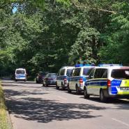 Polizeiautos stehen am Dienstag in einem Waldstück zwischen Babelsberg und Dreilinden, während nach dem mutmaßlichen Vergewaltiger gesucht wird.