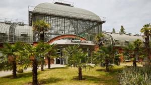 20.000 Pflanzen für den Frankfurter Palmengarten
