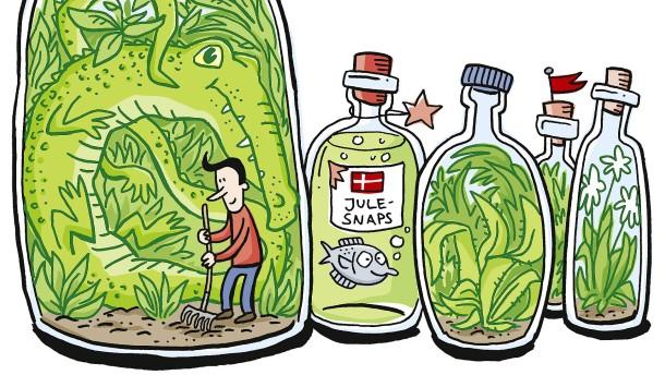 Der Schwarzwald im Einmachglas