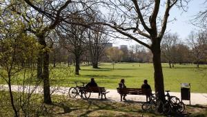 Für Campus-Linie und Grüneburgpark