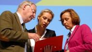 Sind sich in ihrer Meinung über Mesut Özil einig: Die AfD-Spitzenpolitiker Gauland, Weidel und von Storch (v.l.n.r.)