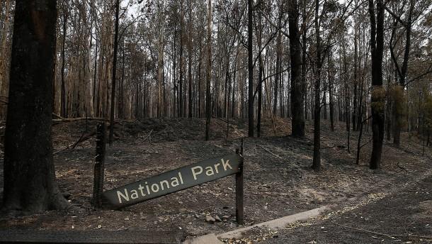 Australien kämpft gegen Feuer und Corona