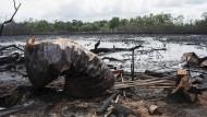 Nigerdelta: Eine Ölkatastrophe ohne Ende