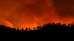 Wieder Waldbrand auf Gran Canaria ausgebrochen