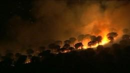 Waldbrände wüten in Andalusien