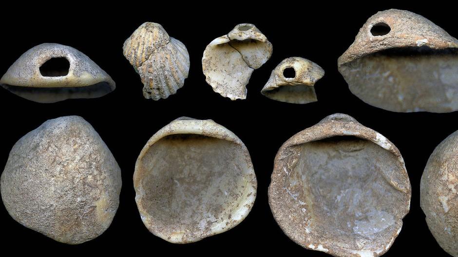 Gelochte Muscheln, gefunden in Sedimenten der Cueva de los Aviones, deren Alter auf 115.000 bis 120.000 Jahre datiert wurde.