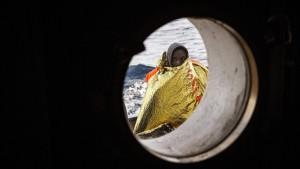Fast 180 Vermisste nach Untergang von Flüchtlingsboot