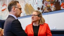 Maas und Schulze fordern schärfere EU-Klimaziele