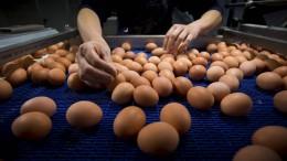 In Deutschland werden die Eier knapp