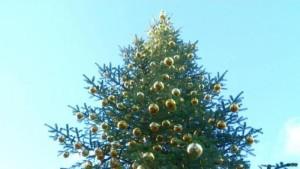 Ein Weihnachtsbaum für die Queen