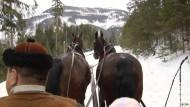 Mit dem Pferdeschlitten durch den Winter