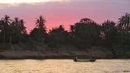 Megadamm bedroht Mekongdelfine