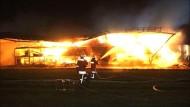 200 Schweine verbrennen bei Großbrand auf Bauernhof