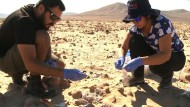 Die Atacama-Wüste als Ersatz für den Mars
