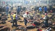 Massenschlachtung bei Hindu-Ritual