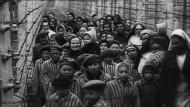 Holocaust-Überlebende blicken zurück
