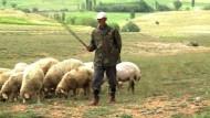 Türkische AKP verliert an Rückhalt unter Bauern