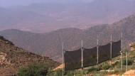 Marokko melkt den Nebel