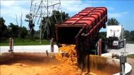 Bauern machen aus Gülle Gold