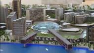 Mit Gummienten gegen ein Mega-Bauprojekt