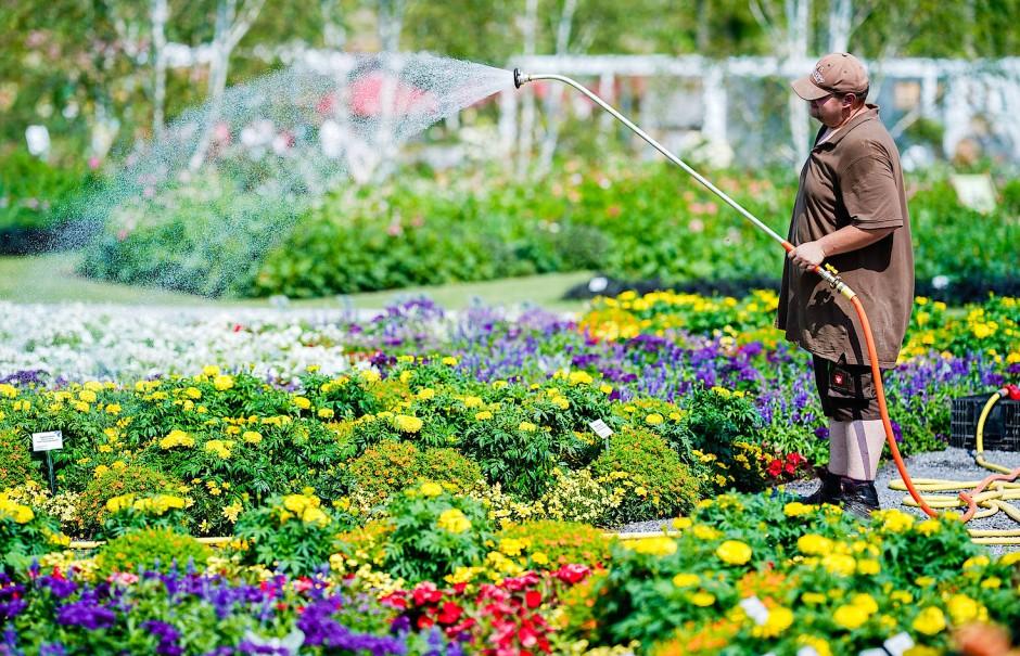 Die neuesten Blühstaudenzüchtungen im Farbmusterbeet: Schön, aber wer soll das alles gießen?