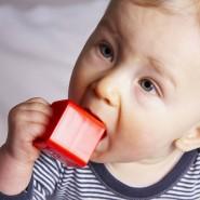 In der ersten Zeit wird viel mit dem Mund erkundet: Das Baby spielt und lernt mit Bauklötzen.