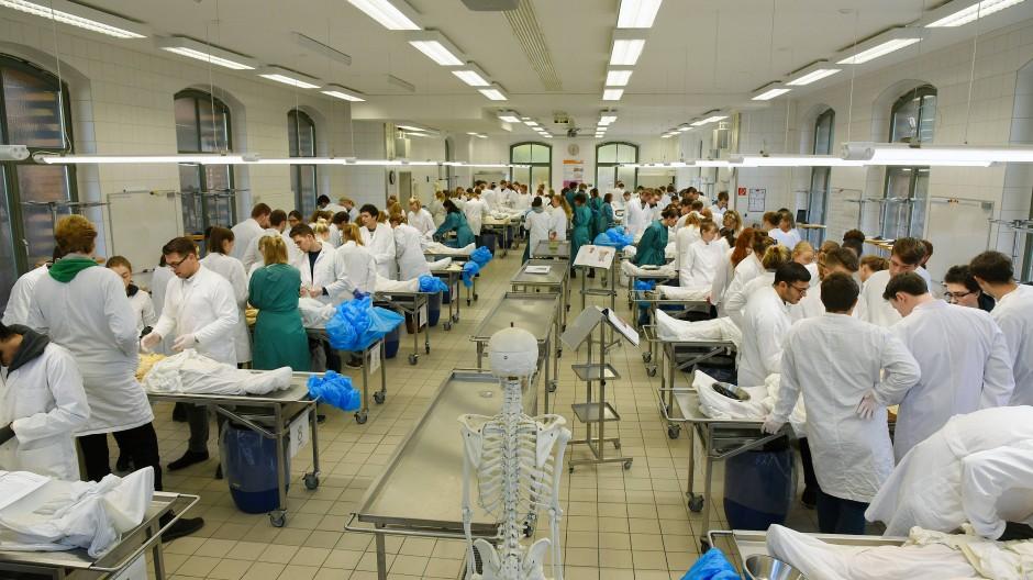 Medizinstudenten im Präpariersaal der Medizinischen Fakultät an der Martin-Luther-Universität Halle-Wittenberg