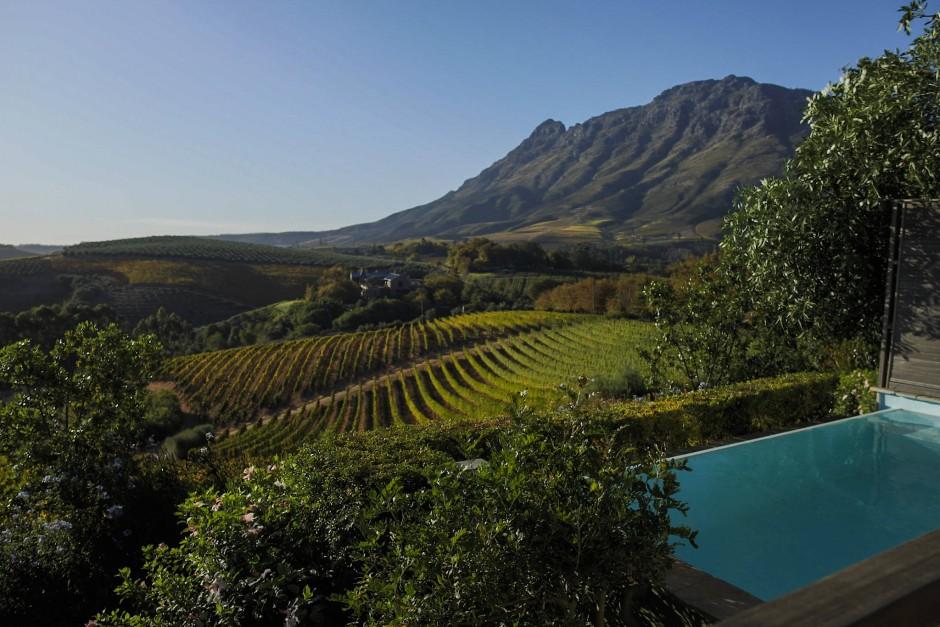 Unbezahlbar ist die Aussicht im Weinland am Kap auf die fünfhundert Millionen Jahre alten Granitberge als schärfster Gegensatz zu den Rebenzeilen, die sich weich wie Höhenlinien an die Berge schmiegen.