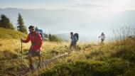 Im Tal die Stadt: Der Innsbruck-Trek führt über die Mutterer Alm.