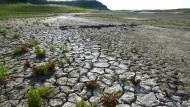 Dürre in Kalifornien: Das Camanche Reservoir enthielt im April 2015 kaum mehr als ein Viertel der sonst gespeicherten Wassermenge.