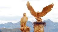 Greifvögel aus Hartholz: Es gibt nichts, was nicht aus einer Zirbe werden könnte