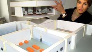 Ort der Information ergänzt Peter Eisenmans Entwurf