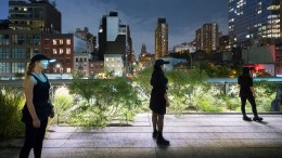 High Line Expectations
