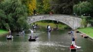 So idyllisch wie hier stellt sich wohl mancher eine Elite-Bundesuniversität vor. Das Bild zeigt den englischen Fluss Cam, der durch die Universität Cambridge fließt