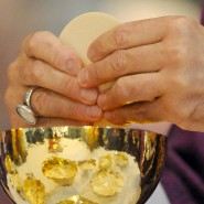 Leib Christi in Brotgestalt: Umkämpftes Mysterium des Glaubens