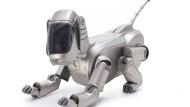 Okay, Aibo – wer erzieht künftig den Roboter-Hund?