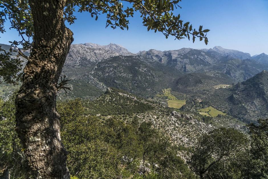 Blick vom Castell d'Alaro auf das Tramuntana-Gebirge