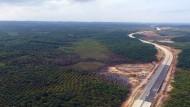 Noch ist hier wenig zu sehen: An diesem Ort soll Indonesiens neue Hauptstadt entstehen.