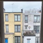 Blick aus dem Fenster von Siri Hustvedt