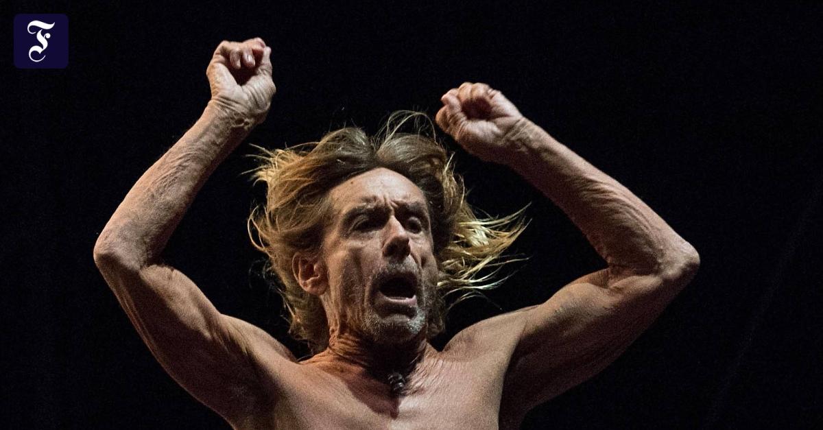 """Ja, er lebt noch: Iggy Pop und sein neues Album """"Free"""""""